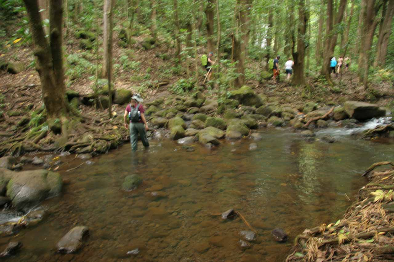 Last stream crossing before Secret Falls