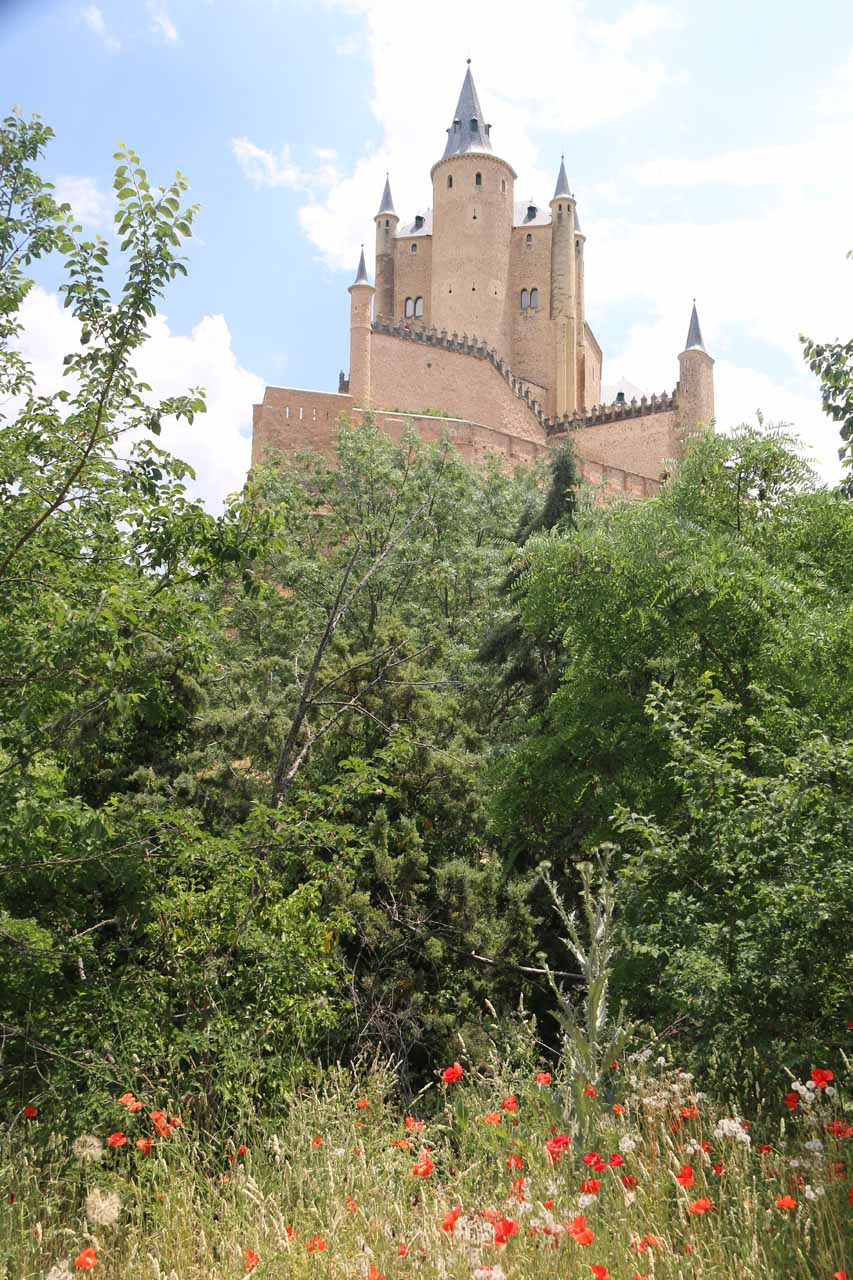 Poppies growing before this backside view of the Alcazar de Segovia very much resembling a Disneyland castle