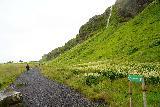 Seljalandsfoss_and-Gljufrabui_063_08072021 - Another look at the context of signage saying that Gljufrabui was a little more than a half-kilometer from Seljalandsfoss