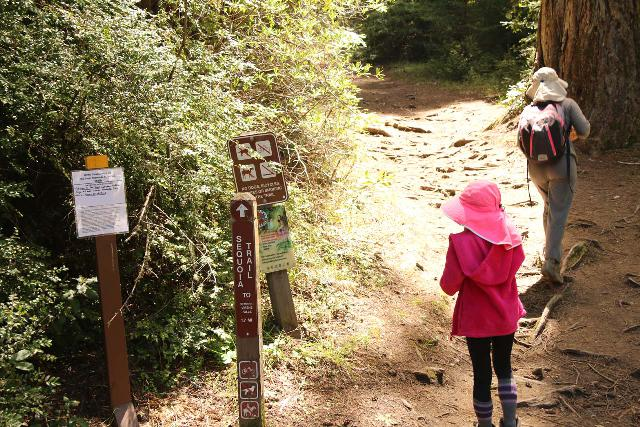 Sempervirens_Falls_012_04222019 - Julie and Tahia getting started on the Sequoia Trail en route to the Sempervirens Falls