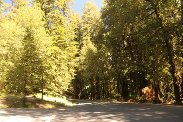 Sempervirens_Falls_148_04222019 - This was where Sky Meadow Drive intersected with Big Basin Way (Hwy 236). We returned to Sequoia Trail here because we didn't feel safe walking this two-lane road with the increased traffic