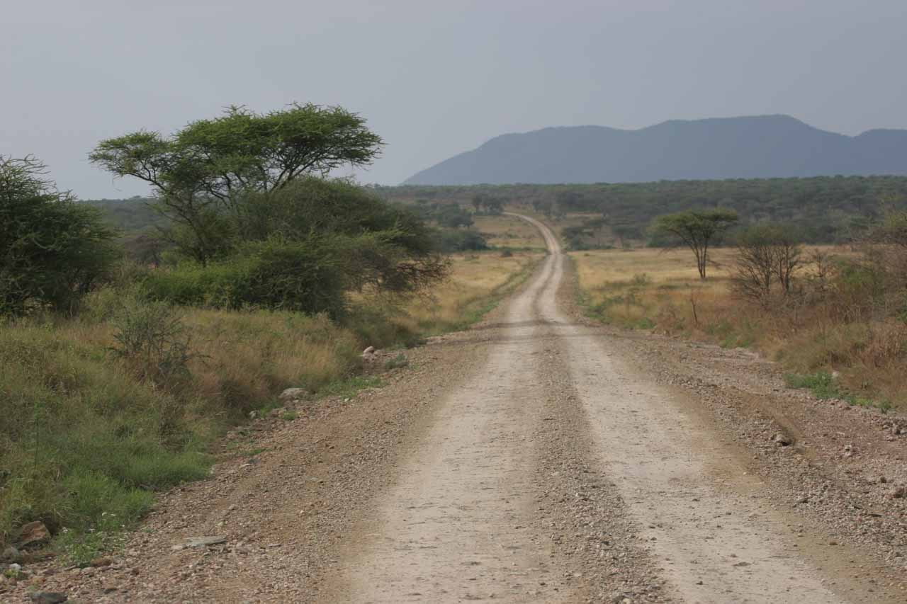 Headed back to the Serengeti National Park