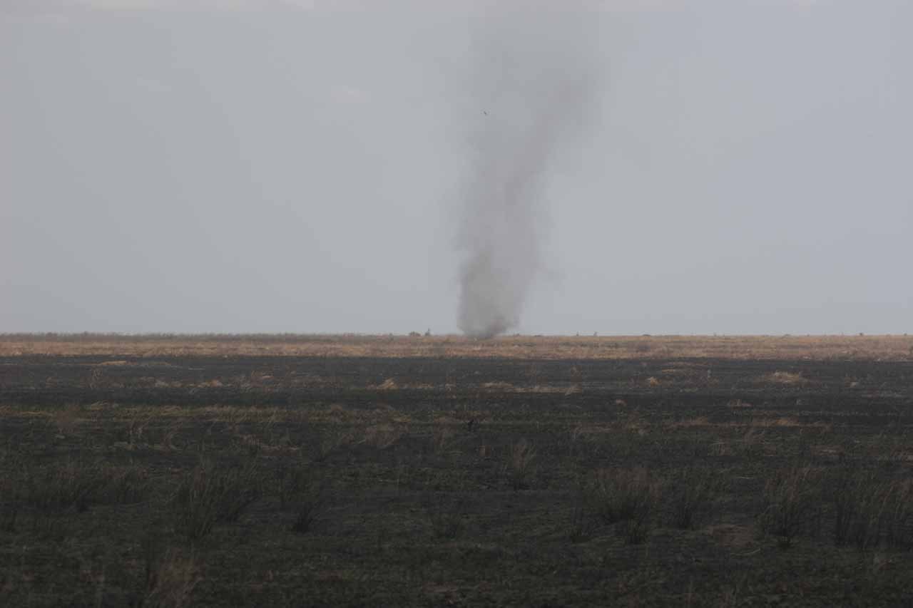 Dust devils were commonly seen in this part of the Serengeti