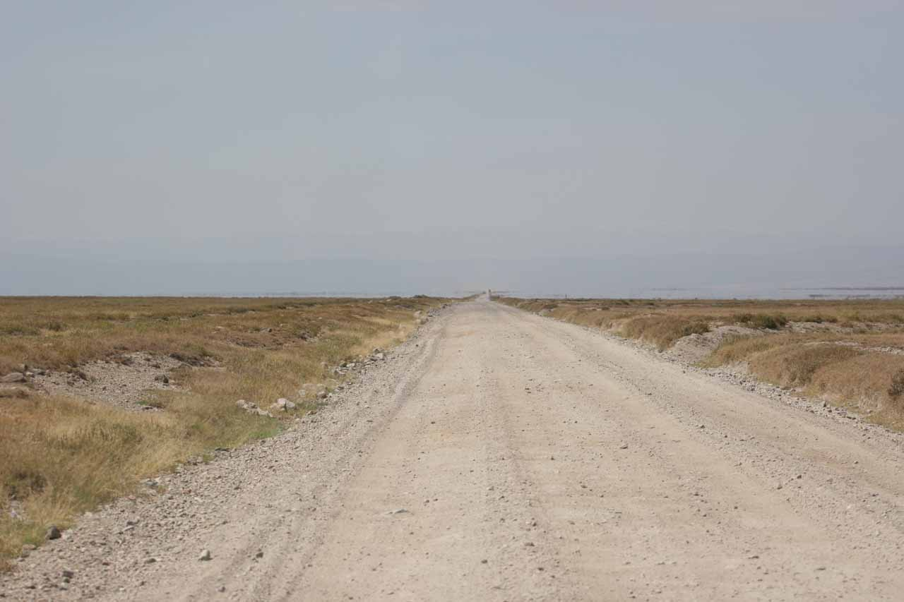 Leaving the Serengeti