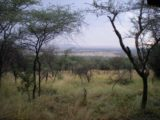 Serengeti_Serena_Lodge_001_jx_06082008 - View from our room