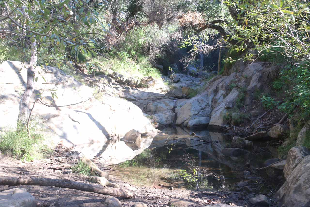 A stagnant pool when we arrived at Mission Creek