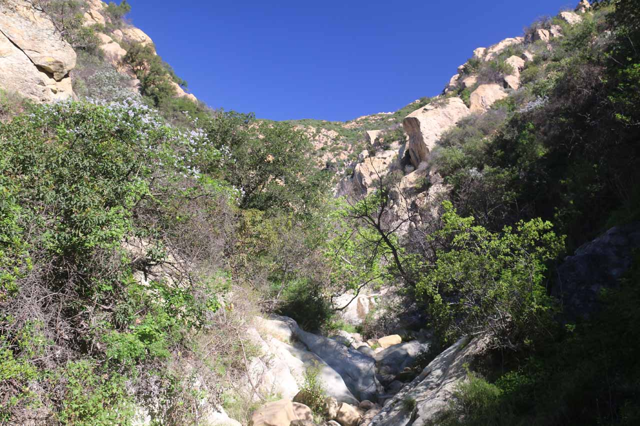 Surrounded by sandstone both above and below us as we continued scrambling upstream