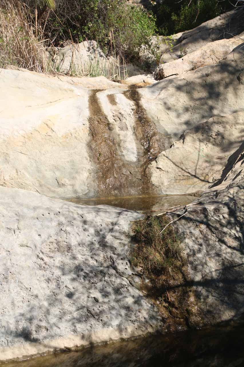 Closer look at the pair of trickles and some pools beneath them