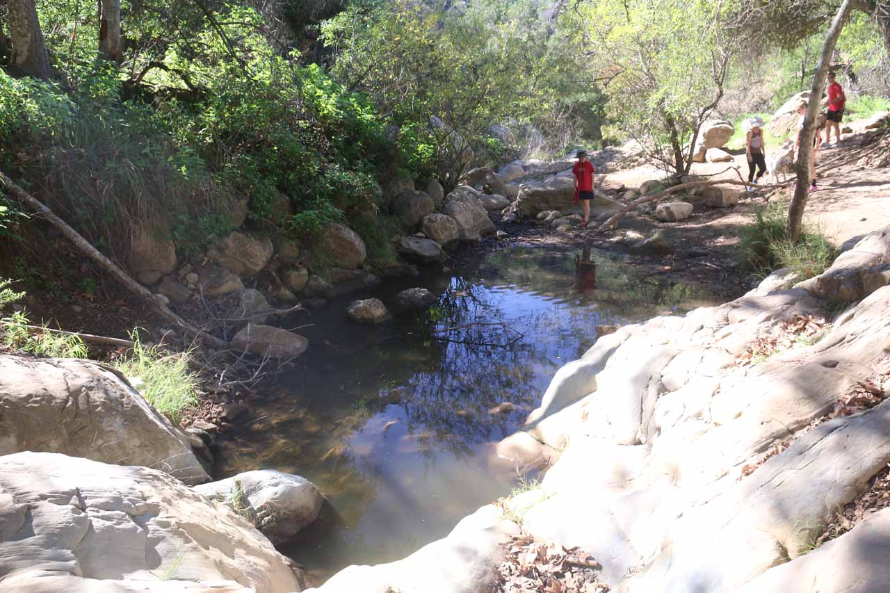 Some kids playing around the stagnant pool on Mission Creek