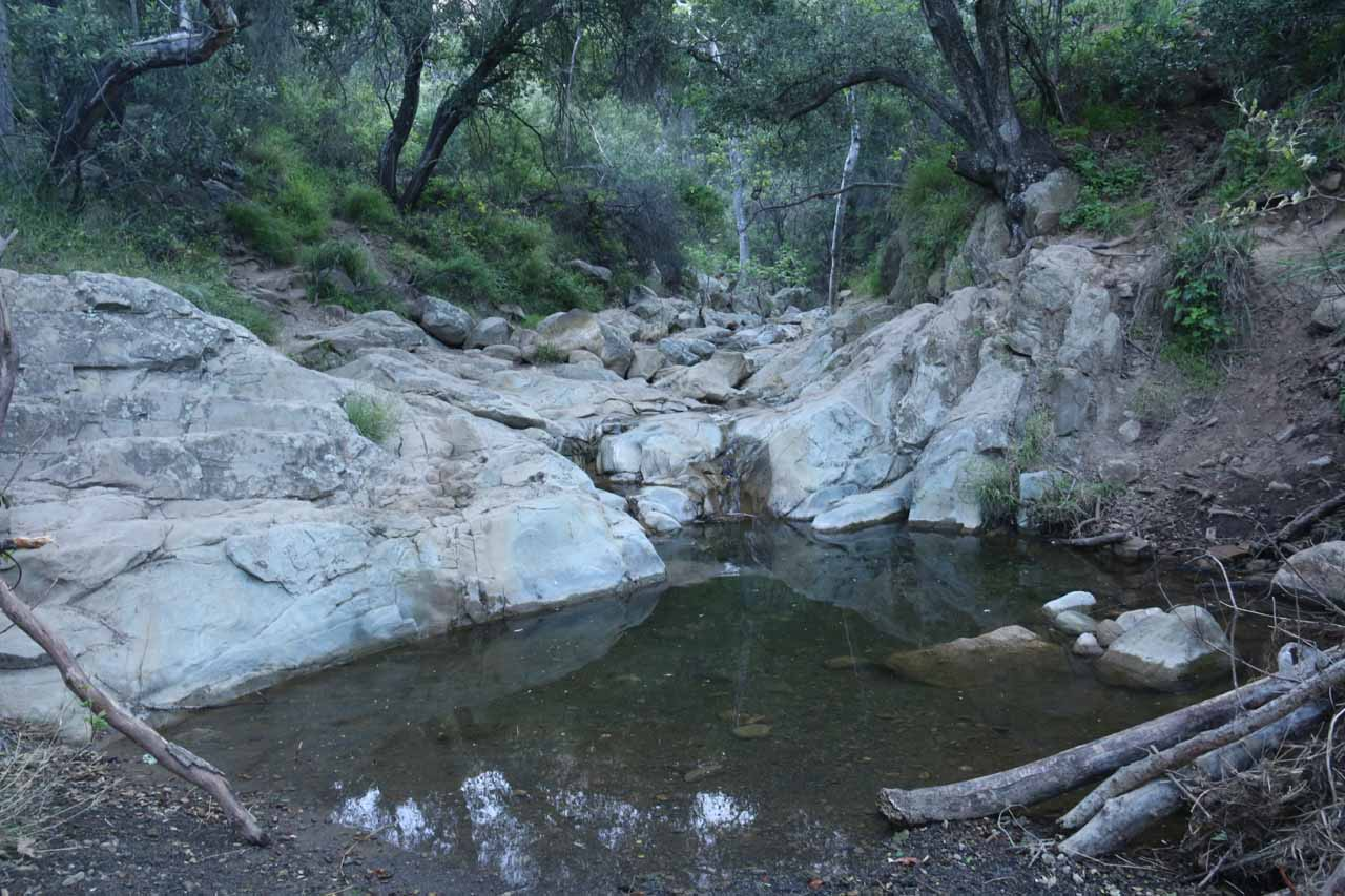 We finally made it to Mission Creek, which wasn't flowing well but did feature pools like this one.  This was when we had left the Jesusita/Inspiration Point Trail to scramble on Mission Creek itself