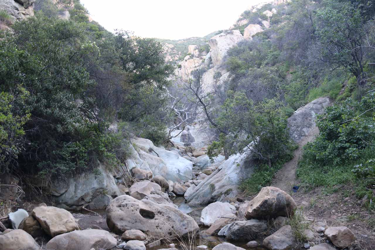 This was about where the trail descended into Mission Creek and I had to stream scramble from here on out, but it wasn't extensive as the waterfalls from the first pool was just up ahead