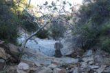 Seven_Falls_SB_17_090_04012017 - Looking back at the waterfall at Pool 1 again