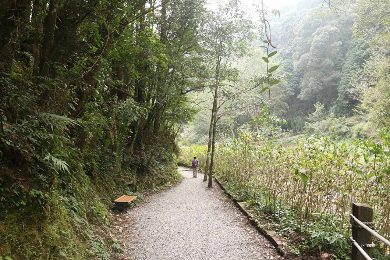 The scenery along the Yueshan Trail was starting to open up as we got closer to its end
