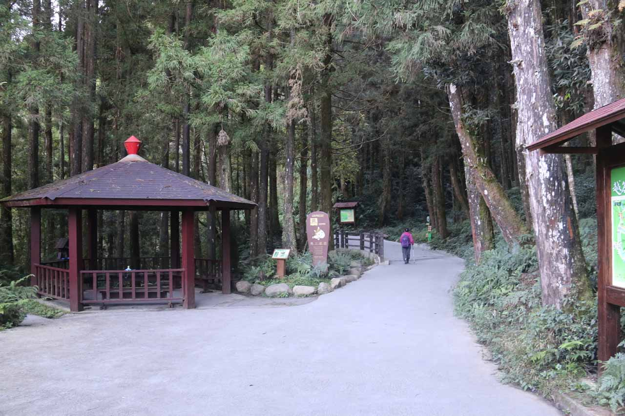 Taking the Chinglong Fern Trail all the way back to the Theme Hall