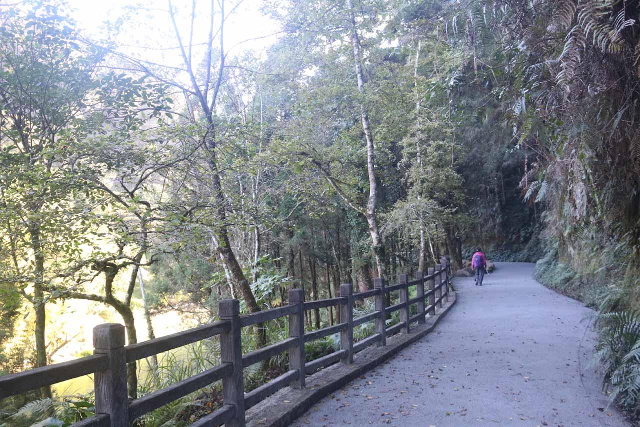 Still following the Chinglong Fern Trail back