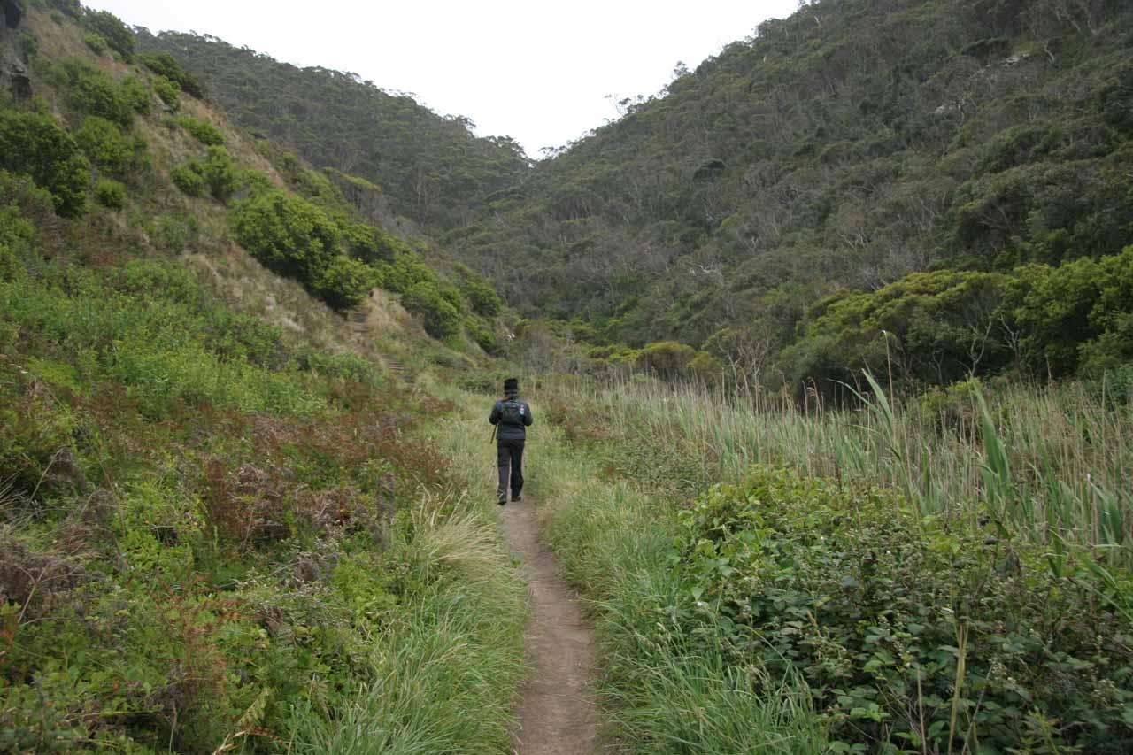 Julie starting on the walk to Sheoak Falls