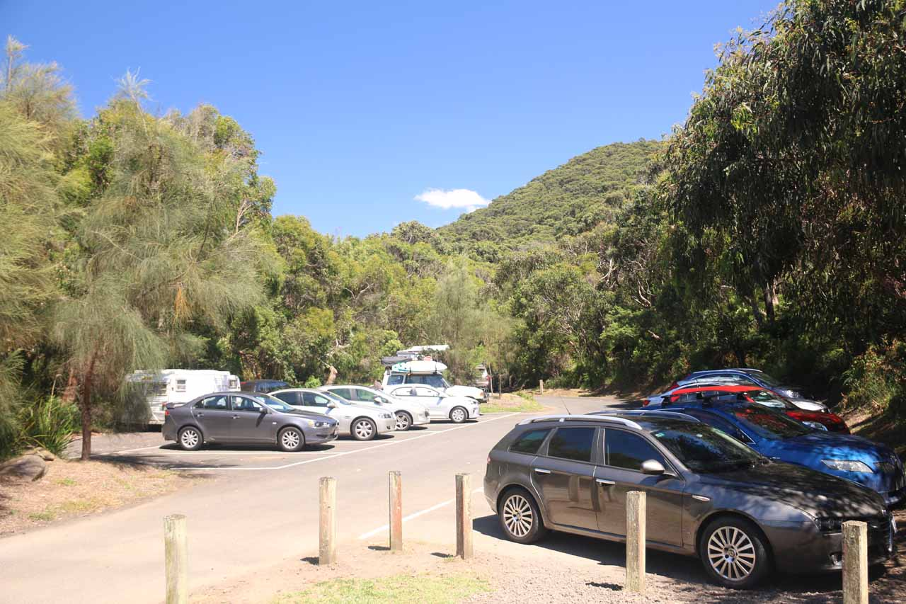 If the car park is full like this, there is additional spillover parking on some of the pullouts across the Great Ocean Road