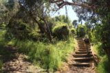 Sheoak_Falls_17_014_11182017 - The Sheoak Falls hike immediately ascended these steps, which made things pretty sweaty on a hot day like when this photo was taken in November 2017