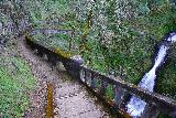 Shepperds_Dell_005_04062021 - Looking down at the context of the walkway leading to the brink of the lower drop of the Shepperd's Dell Waterfall as seen in early April 2021.