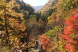 Shirahone_Onsen_059_10192016 - Looking down into a canyon with lots of koyo as seen from the main part of the Shirahone Onsen