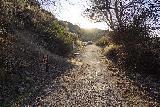 Shoshone_Falls_071_04012021 - Back on the familiar Centennial Trail at Shoshone Falls