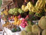 Siem_Reap_004_jx_01072009 - Fruit stand in Siem Reap