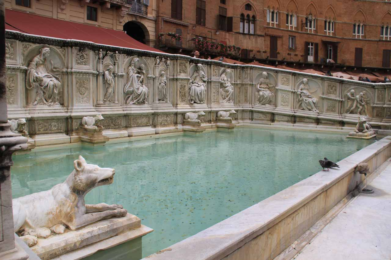 A fountain with wolves flanking it in the Piazza del Campo