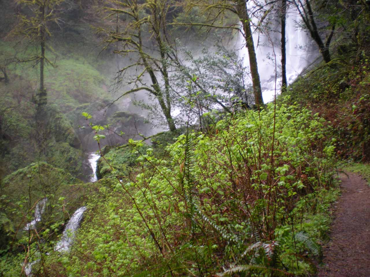 A short spur to the base of Silver Falls from the upper trail leading to the top of Golden Falls