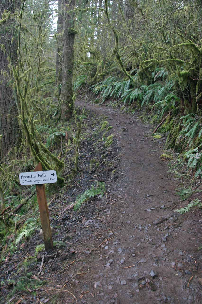 Signposted spur trail leading to Frenchie Falls