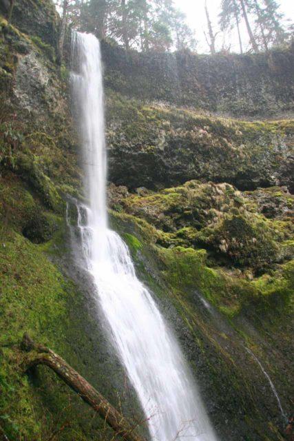 Silver_Falls_150_03312009 - Winter Falls in Silver Falls State Park
