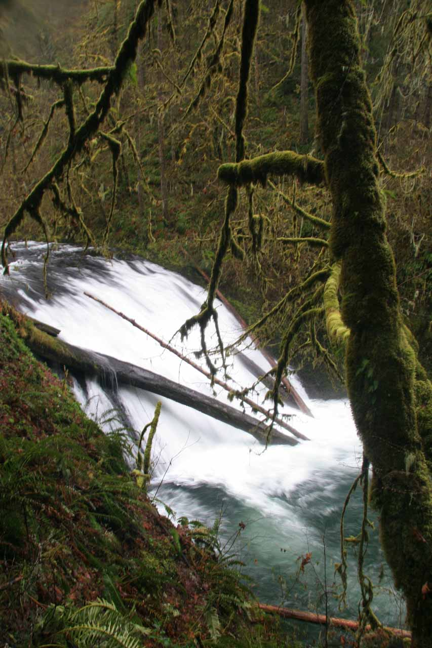 Angled view of Lower North Falls with fallen logs strewn across its drop