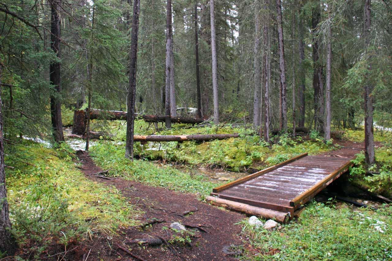 This was the bridge that we didn't take (staying left of it) as we were headed to Silverton Falls on the unofficial trail