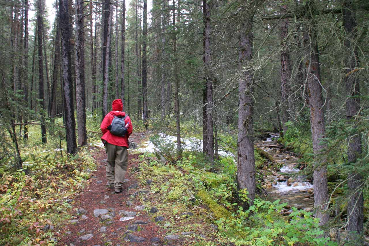 Julie on the still fairly-defined trail as we followed it alongside a small brook