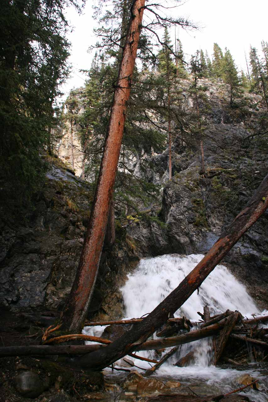 The bottommost tier of Silverton Falls