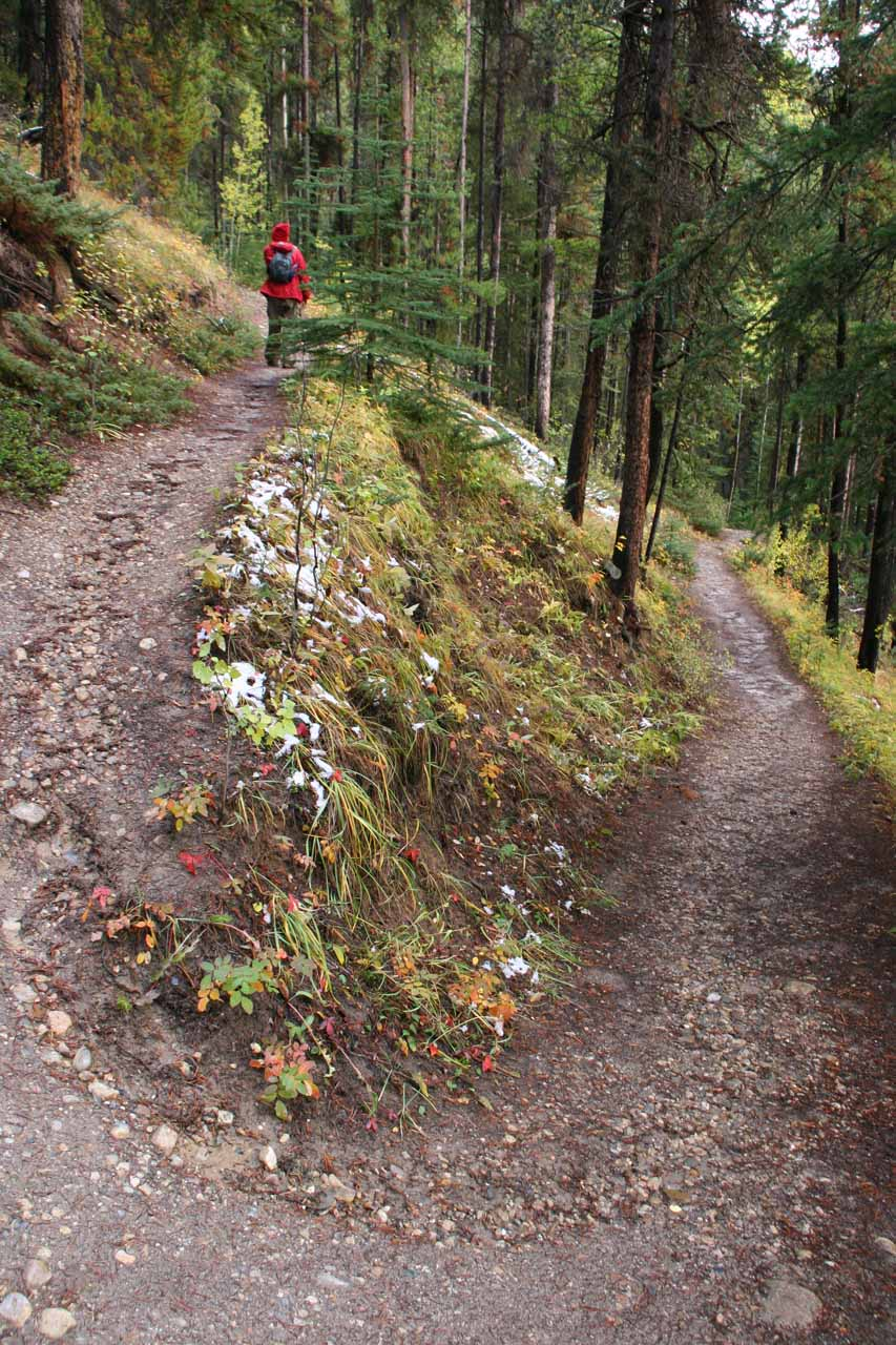 The switchback on the way to the correct viewpoint of Silverton Falls