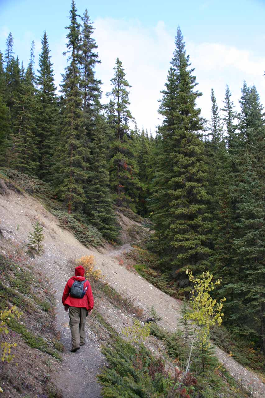 Julie approaches a little landslip section a short distance before the endpoint of the hike