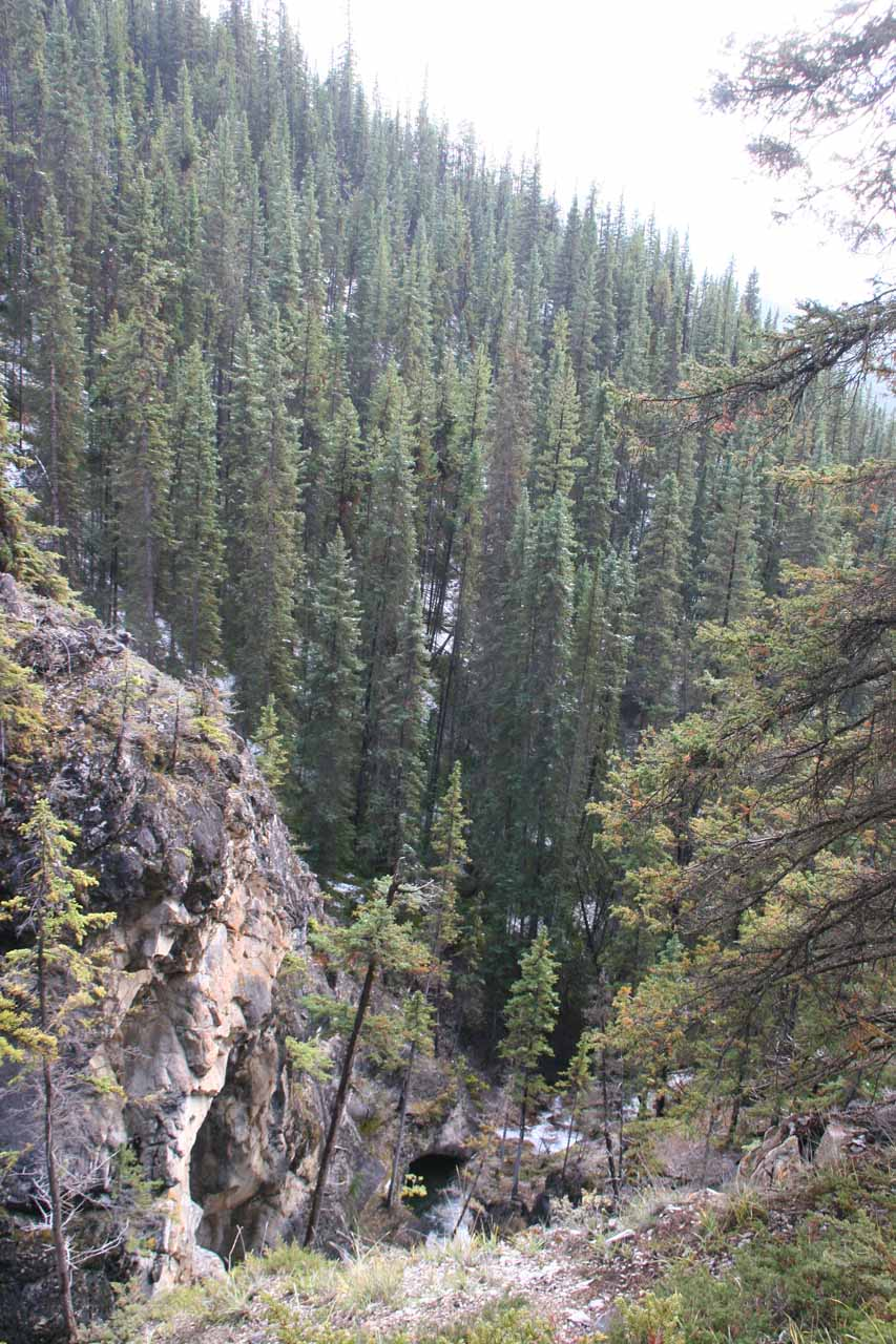 Looking downstream over the remaining hidden tiers of Silverton Falls
