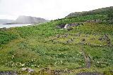 Sjavarfoss_003_08042021 - Context of Sjávarfoss backed by some rainy weather further towards the head of the fjord