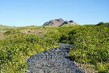 Skaftafell_NP_130_08082021 - Continuing on the Svartifoss hike towards Midheidi