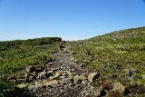 Skaftafell_NP_203_08082021 - Mom continuing on the trail leading up to Sjonarsker