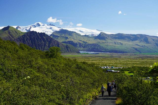 Skaftafell_NP_288_08082021 - On a clear day, the scenery around the Svartifoss Trail is simply breathtaking. This 2021 photo was taken near the end of the hike where Vatnajökull sits above the blue glacier arm of Svínafellsjökull and the vast glacial plains (that now seem to become more greener than the desolate black sands we had seen in 2007)