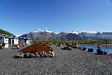 Skaftafell_NP_302_08082021 - Back at the visitor center for the former Skaftafell National Park (now Vatnajokull NP) to end the Svartifoss hike