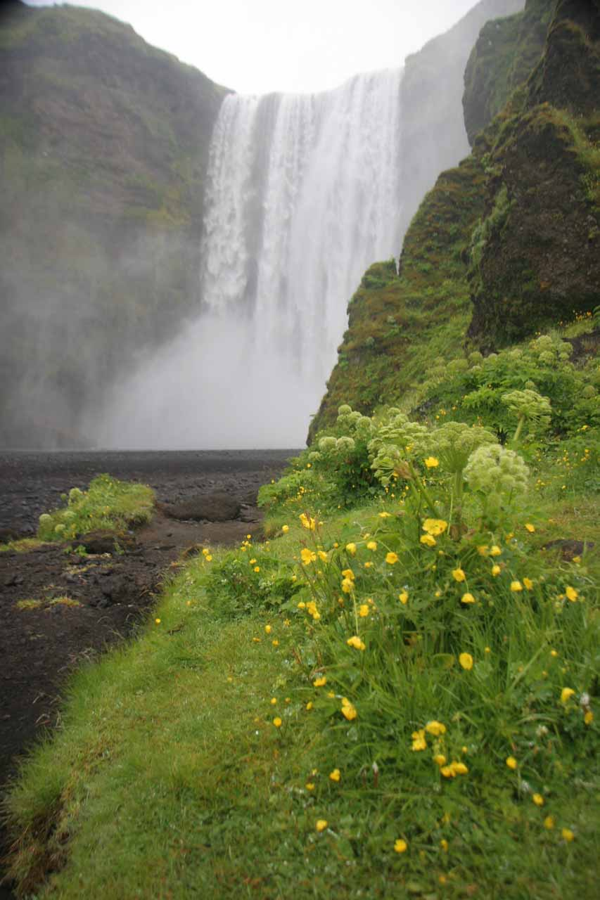 While Kvernufoss is pretty and well worth the effort to reach, I'd imagine most people don't even know it exists because of its proximity to Skógafoss