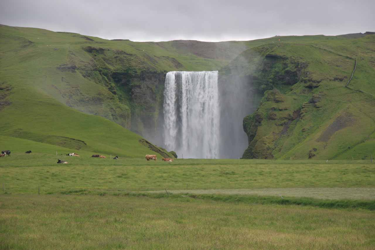 View of Skógafoss from the other side of the river
