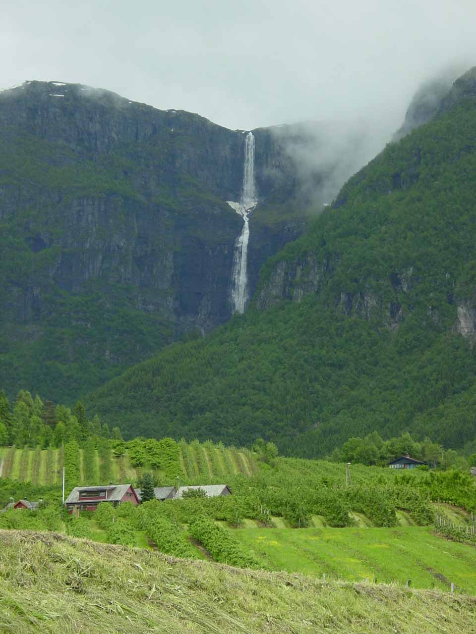 As we drove further north along the Rv13 from Ædnafossen towards Ullensvang, we saw this gorgeous waterfall called Skrikjofossen on the east side of Sørfjorden