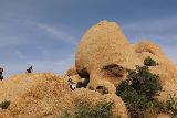Skull_Rock_038_05182019 - Last look back at the popular Skull Rock