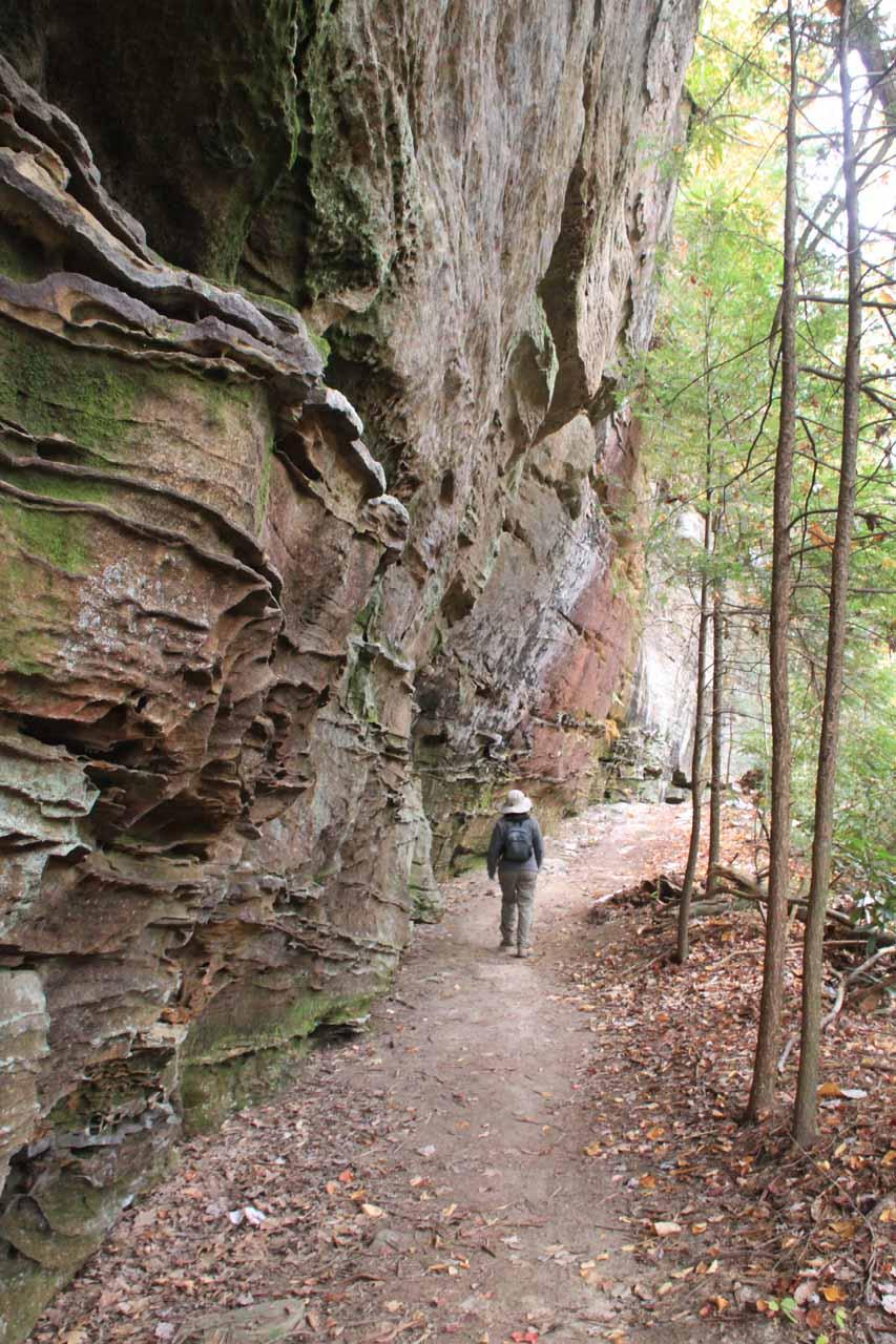 The trail hugging against vertical overhanging cliffs