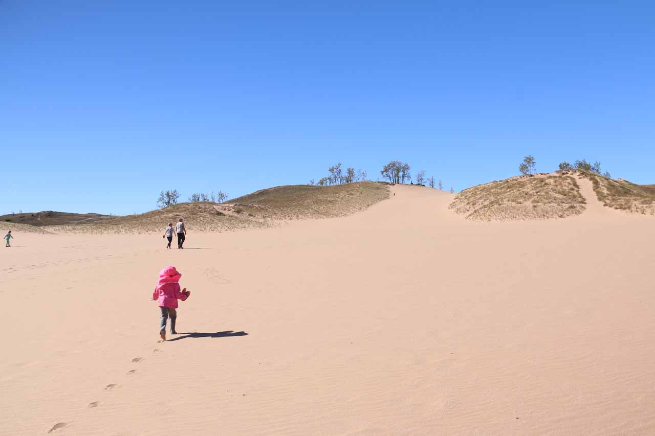 Tahia making her way up to the top of the dunes climb