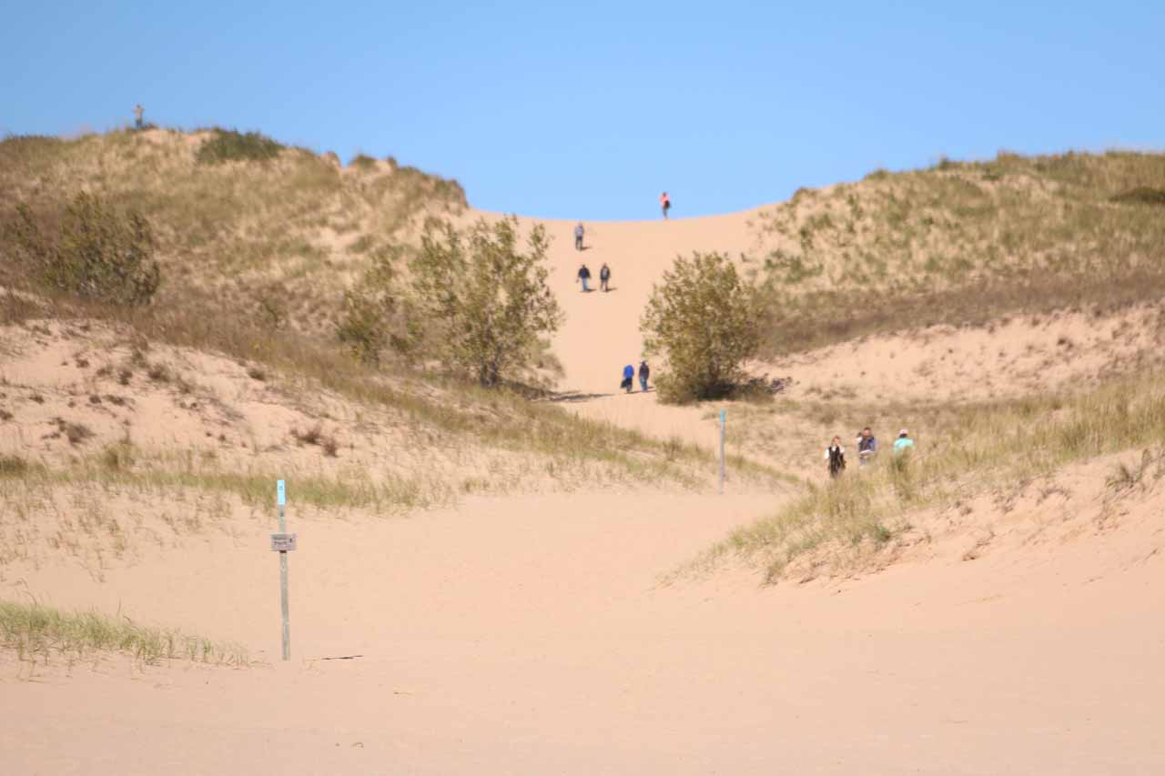 Looking in the distance where other people made the Sleeping Bear Dunes Climb on a path different from what we took