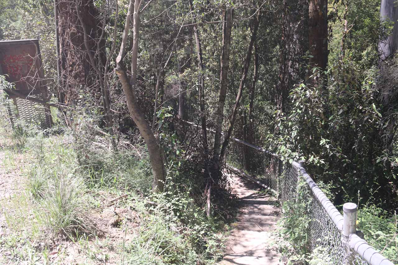 On the short 100m track leading to the Snobs Creek Falls